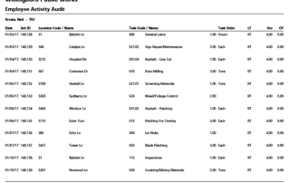 Labor Detail