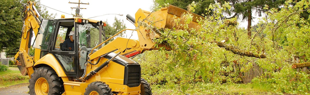 Reno County Storm Clean-up